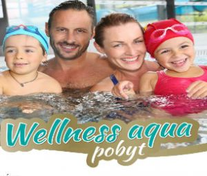 Wellness Hotel Patince...